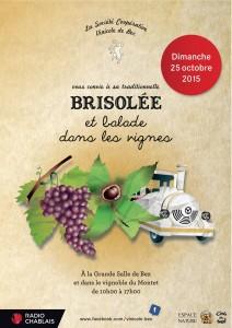 Brisolée0